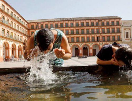 La temperatura incrementará y las ciudades serán las más afectadas